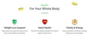 Benefits of ProVen supplements