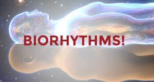 biorythms